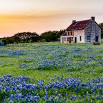 The best ways to sell your house in Sherman Texas