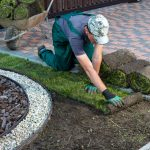 Top 6 Landscaping Do's and Don'ts For Home Sellers In Phoenix
